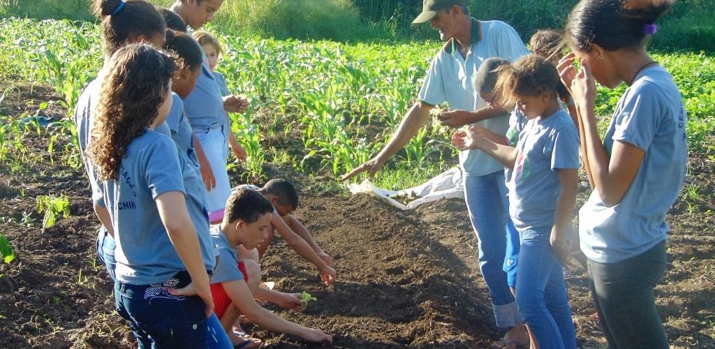 Nell'orto con Silvestre si coltiva